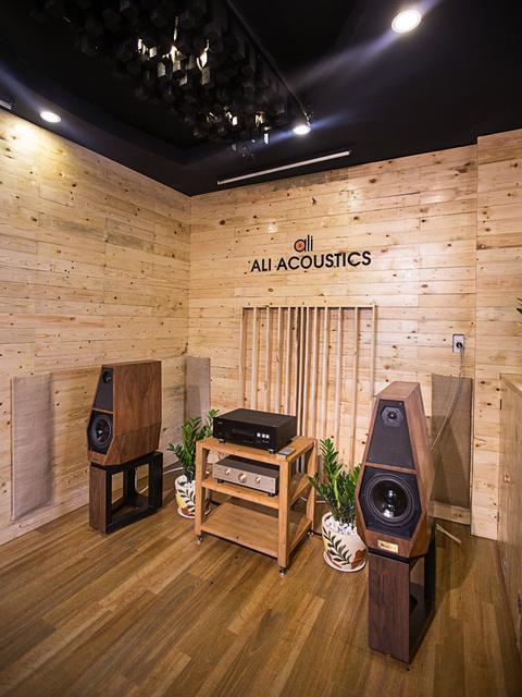 Ali  acoustics 1.jpg