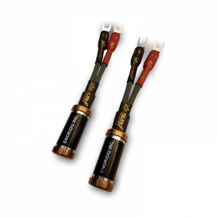 enacom_speaker_noise_eliminators_ltd_banana_plugs.thumb.png.189ce75e5fa4b373624ce2d6a5d4ef42.png