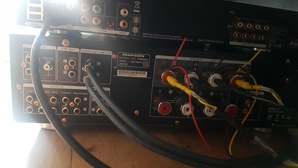 tył PM8005.jpg