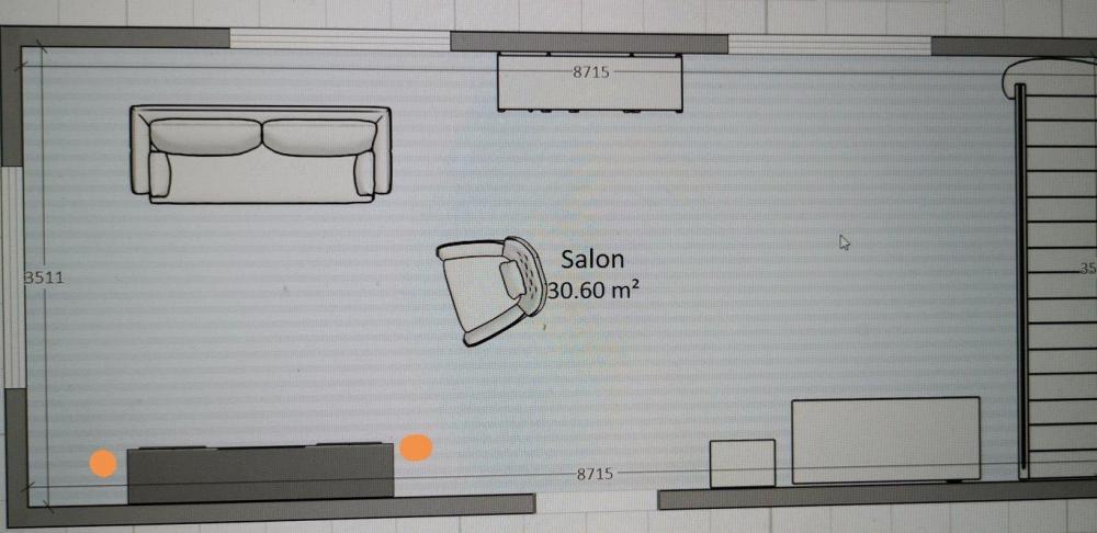 salon.jpg.f31d1321c5177ba41cd3e7a2cc9b165a.jpg