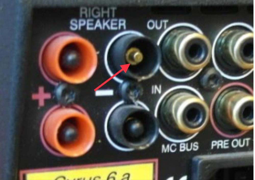 88FC86FB-EF4E-468E-84A8-23725AB7F938.jpeg
